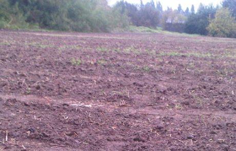 קרקע חקלאית בפרדס חנה